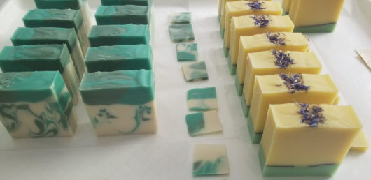 Summer Dandelion Handmade Soap Ready for Curing Rack